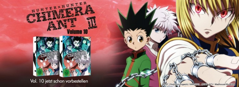 Teaser HxH Vol. 10
