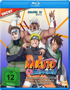 Naruto Shippuden - Staffel 12 Box 2: Episode 481-495 (uncut) [Blu-ray]