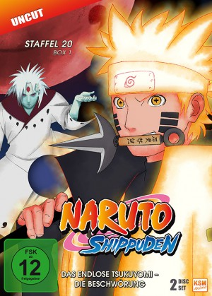 Naruto Shippuden - Staffel 20 Box 1: Episode 634-641 (uncut) [DVD]