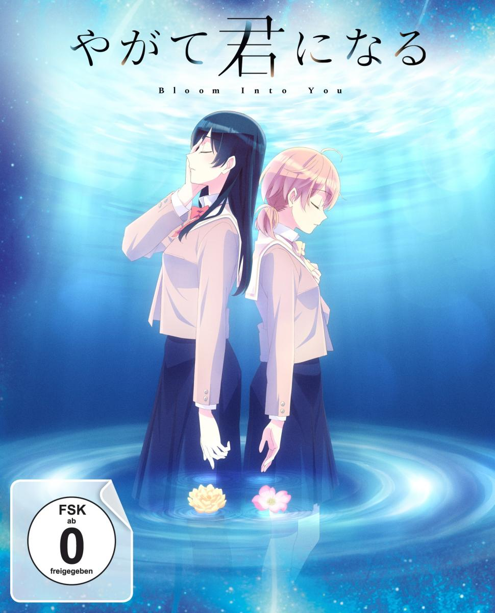 Bloom Into You - Volume 3: Episode 09-13 [DVD]